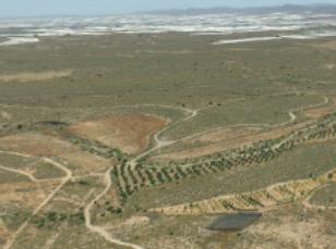 TYPSA proyectará el tramo Nijar-Almería del Corredor Mediterráneo de alta velocidad